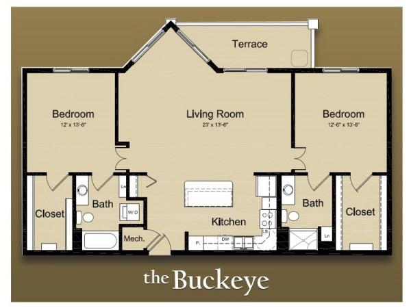 brown-buckeye-e1290096527211